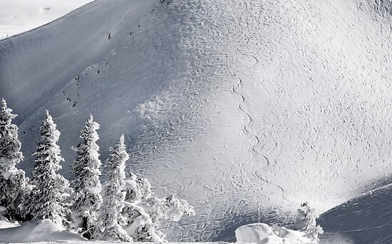 Snowboard Trail by Charles Kosina