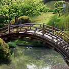 Bridge over pond by loiteke