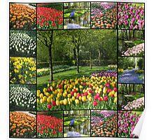 Kaleidoscope of Colours - Keukenhof Collage Poster