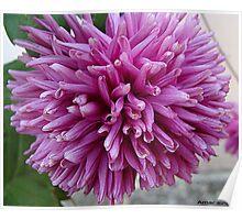 lovely floral Poster