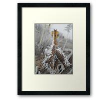 Man Frost Framed Print