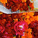 Marigolds and Roses, Pushkar by nekineko
