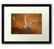 The Misty Gulf Framed Print