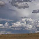 Mighty Skies by David Haworth