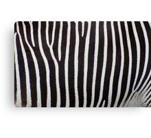 Zebra Skin Canvas Print