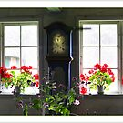 Windows by RosiLorz