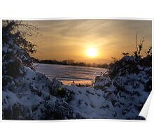 Snowy sunset seen through a hedge. Poster