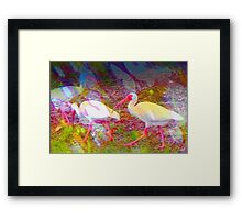Following the flock Framed Print