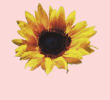 Summer Sunflower Painted Effect by Paul Rumsey