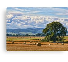 Rural Nature Countryside Scenic Landscape Photography Canvas Print
