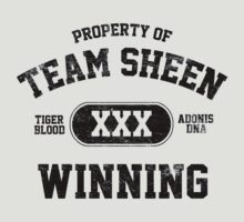 Charlie Sheen  Winning Tigers Blood by personalized