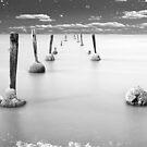 Seafood Runway by Luis Ferreiro