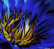 Blue fire by amar singh