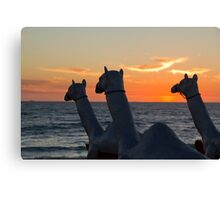 "Camels - Cottesloe ""Sculpture by the Sea"" Canvas Print"