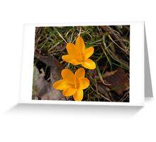 Double Sunshine :) Greeting Card