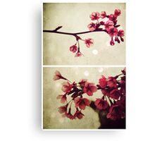 Spring - Cherryblossom Pink Canvas Print