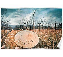 oriental parisol in the spring vineyards of Napa Poster