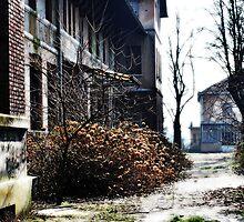 WARD IN EX MOMBELLO'S ASYLUM by Alessia Ghisi Migliari
