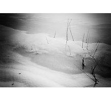 Spring is just around the corner    (Holga style) Photographic Print