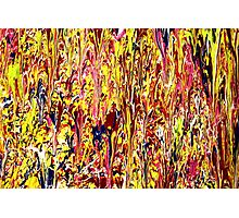 Abstract Jackson Pollock Painting Titled: Stimulates Photographic Print