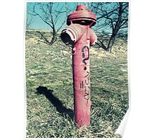 Acid fire hydrant? Poster