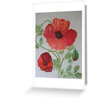 Norfolk Poppies Greeting Card