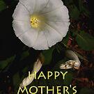morning glory mum's day card by dedmanshootn