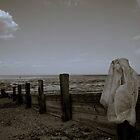 dark summer by zipthompson