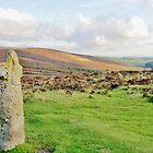 Dartmoor Celtic Cross  by Janice Petitjean