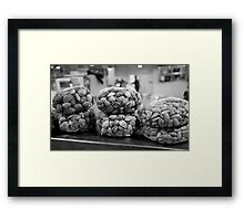 All Clammed Up Framed Print