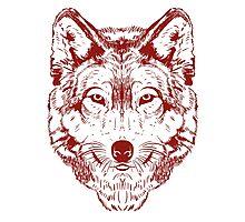 Wolf 2 Photographic Print