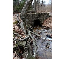 Cold Spring Stone Bridge Photographic Print