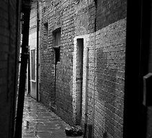 Alley by joeribbons