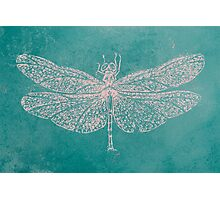BRCA Dragon Fly  Photographic Print