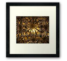 inner light 3 Framed Print