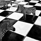 The Chessboard by Erica Yanina Lujan