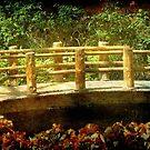 Nature's Garden © by Dawn M. Becker