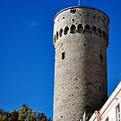 Tall Hermann, Tallinn, Estonia by HeatherMScholl