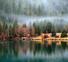 Misty Reflections by martingilchrist