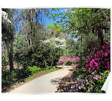 A Walk in Spring Poster