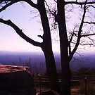 Overlook at the Top of Cheaha State  Park by Charldia