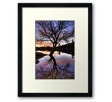 Spreading Out Framed Print