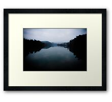 Bamboo sea . Framed Print