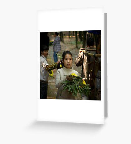 bamboo sea .......... Greeting Card