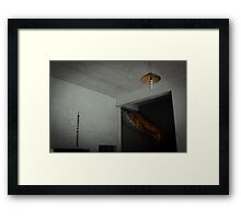 decor . Framed Print