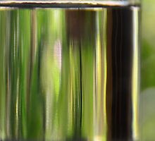 Through the drinking glass by Georgie Hart