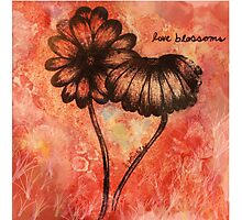Love Blossoms Photographic Print
