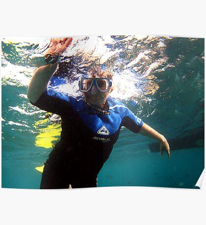 Fun Under the Sea! Poster