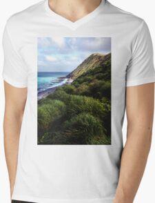 Coastal View, Maquarie Island Mens V-Neck T-Shirt