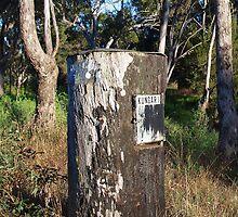 Tree Trunk Mailbox by Liz Worth